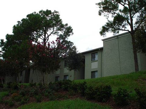 Apartments In Clermont Fl Grand View Apartments Pet